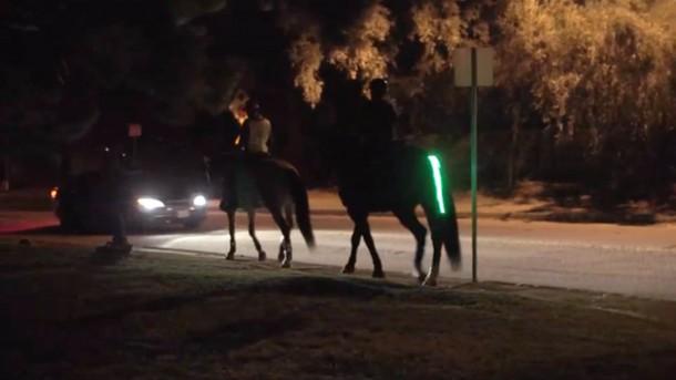 Programa de seguridad del piloto de luces traseras - Horse Safety 5