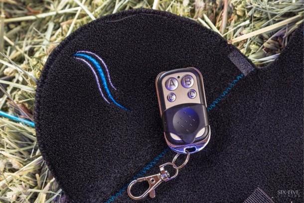 Programa de seguridad del piloto de luces traseras - Horse Safety 4