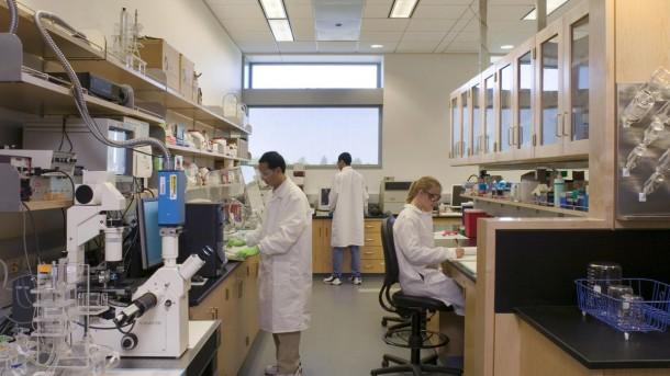 Los 5 principales campos de ingeniería según Millennials Biomedical