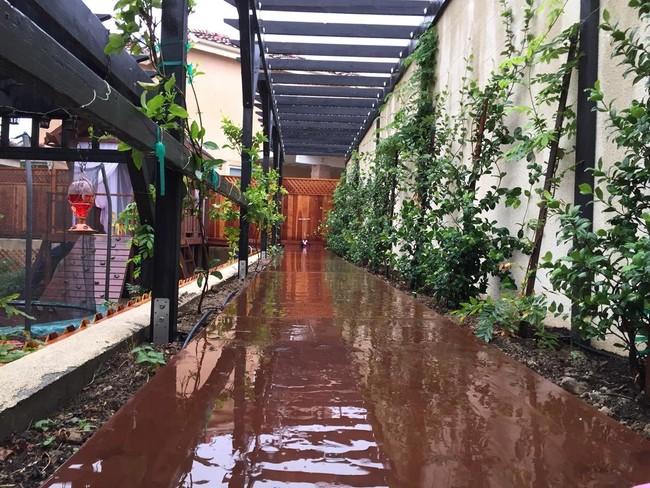 DIY patio trasero18