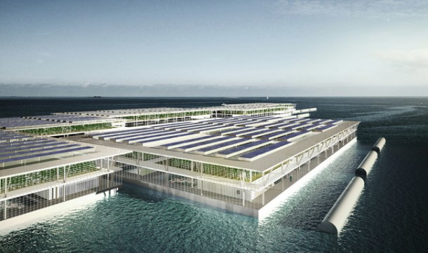 La granja solar flotante es capaz de producir 8 toneladas de vegetales por año 2