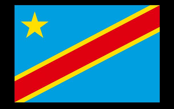 Bandera de la República Democrática del Congo (5)