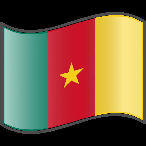 Bandera de Camerún (4)