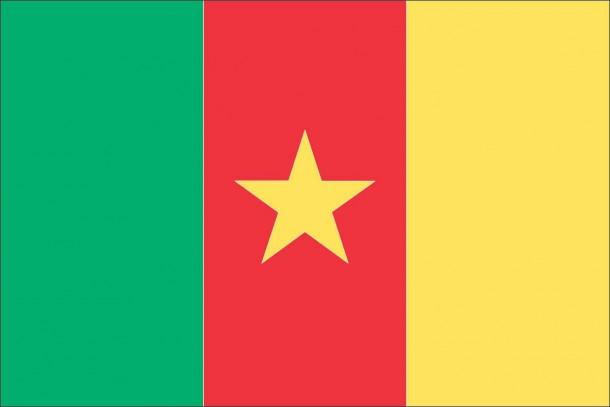 Bandera de Camerún (3)