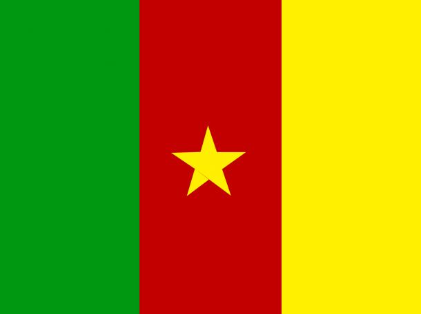 Bandera de Camerún (5)