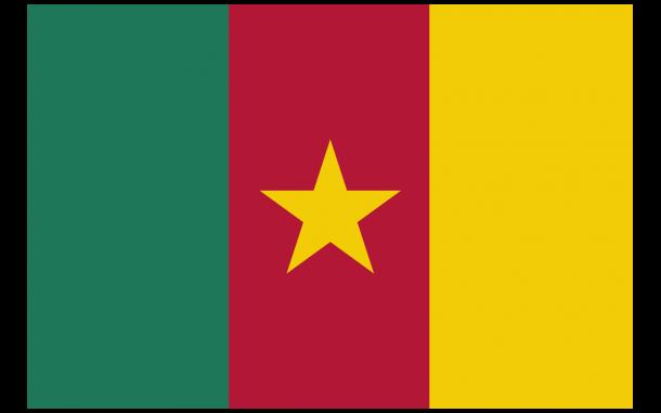 Bandera de Camerún (6)