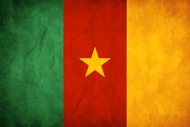 Bandera de Camerún (7)