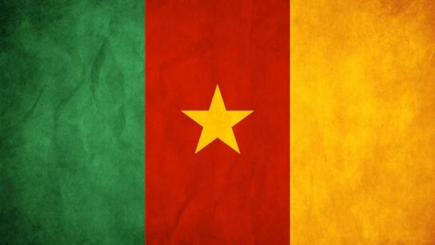 Bandera de Camerún (8)