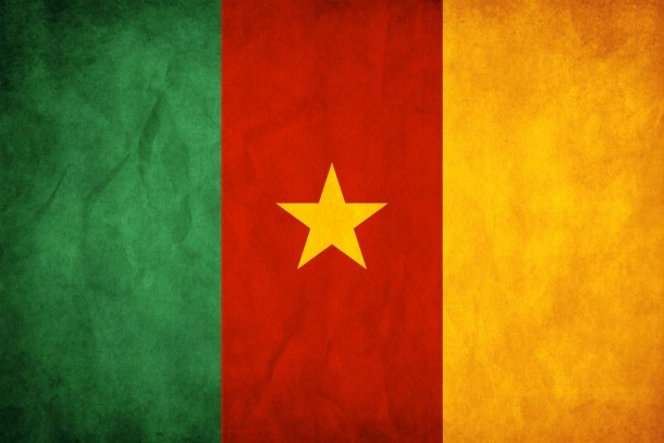 Bandera de Camerún (9)