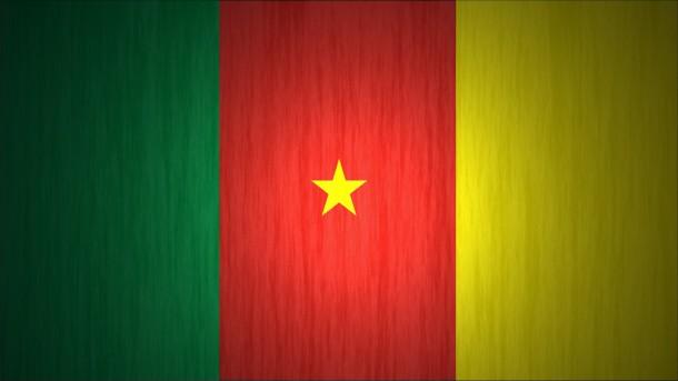 Bandera de Camerún (10)