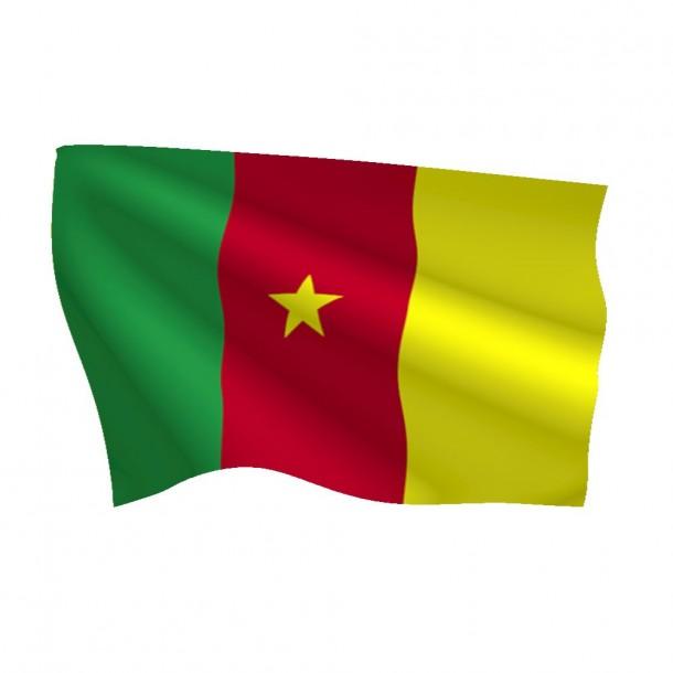 Bandera de Camerún (11)