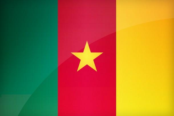 Bandera de Camerún (12)