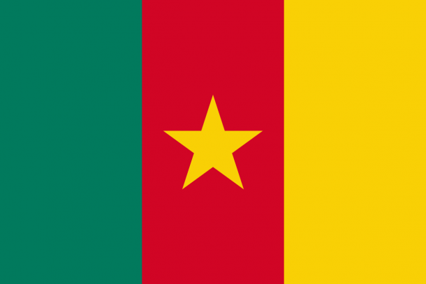 Bandera de Camerún (13)