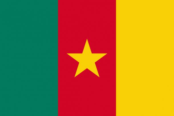 Bandera de Camerún (14)