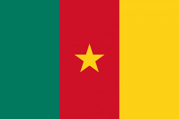 Bandera de Camerún (16)
