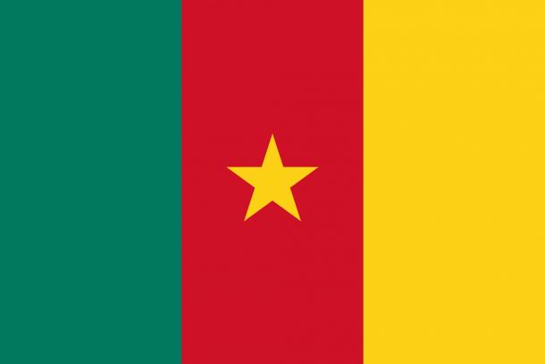Bandera de Camerún (17)