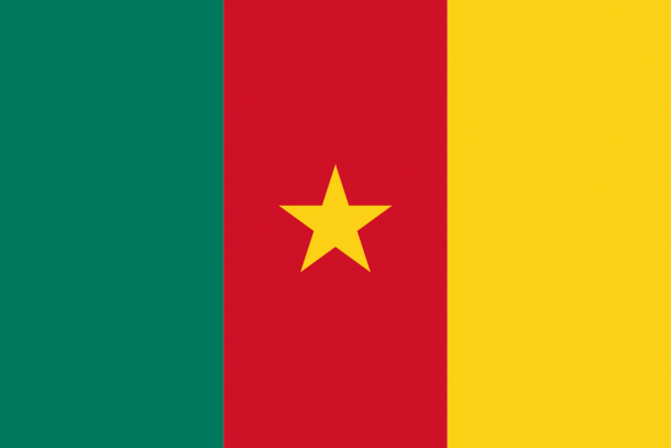 Bandera de Camerún (20)