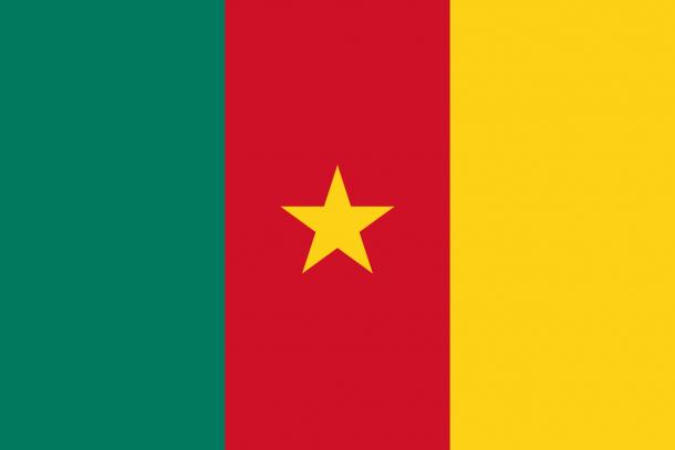 Bandera de Camerún (22)