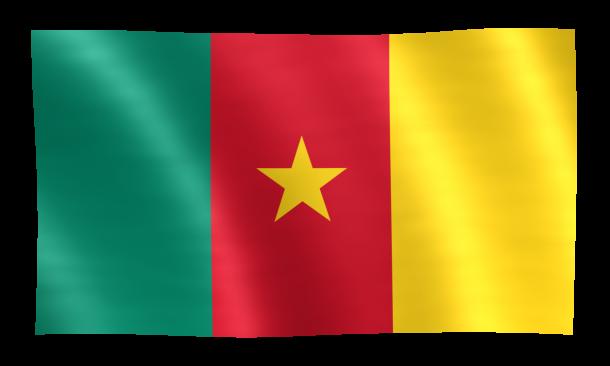 Bandera de Camerún (23)