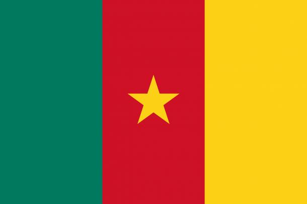 Bandera de Camerún (24)