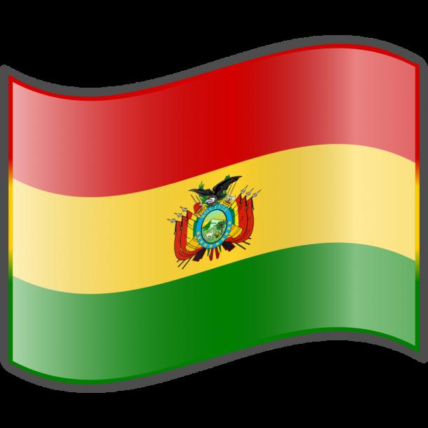 Bandera de Bolivia (9)