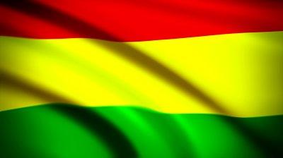 Bandera de Bolivia (18)