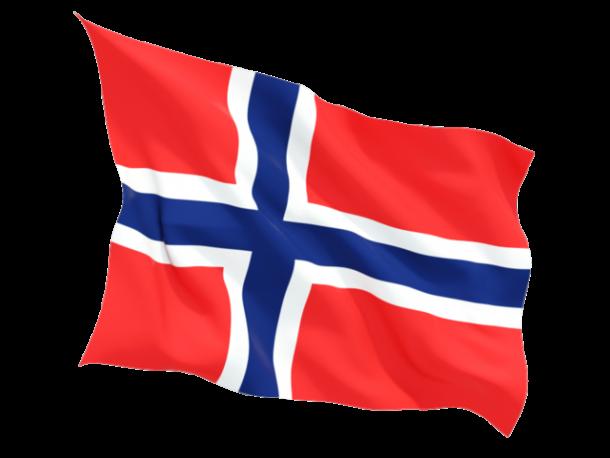 Bandera Bouvet (6)