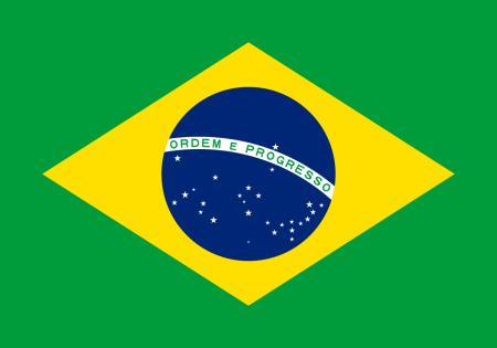 bandera de brasil (7)