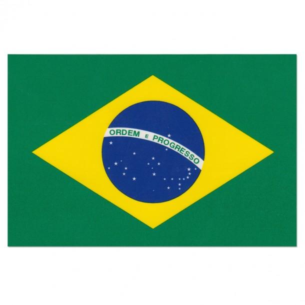 bandera de brasil (24)
