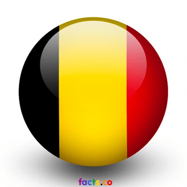 Bandera de Bélgica (4)