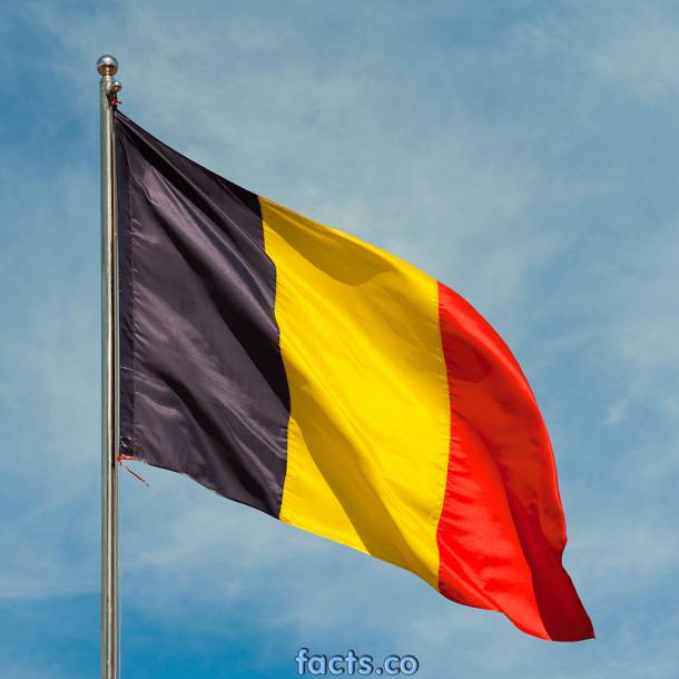 Bandera de Bélgica (8)