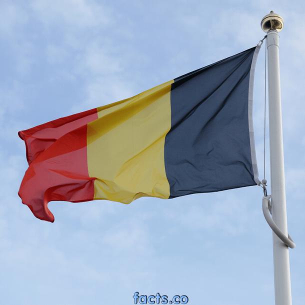Bandera de Bélgica (9)