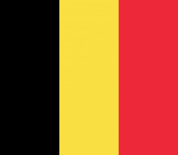 Bandera de Bélgica (14)