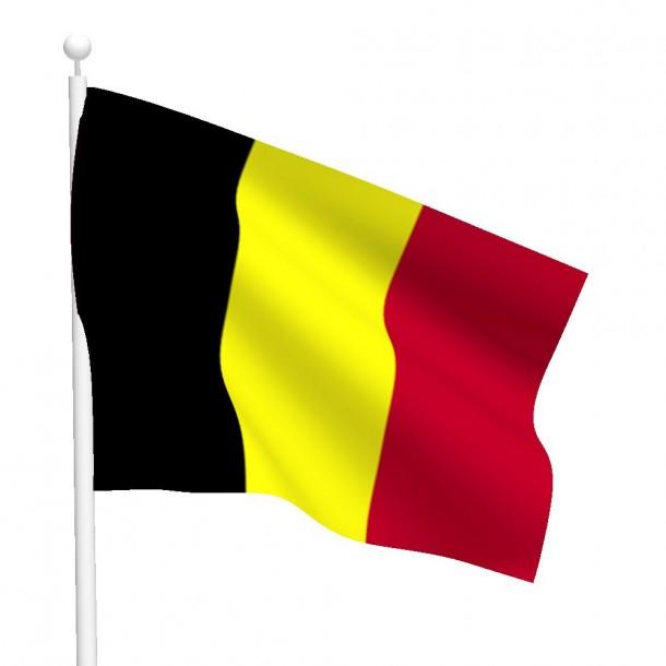 Bandera de Bélgica (20)
