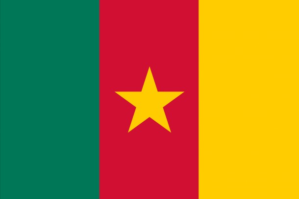 Bandera de Camerún (2)