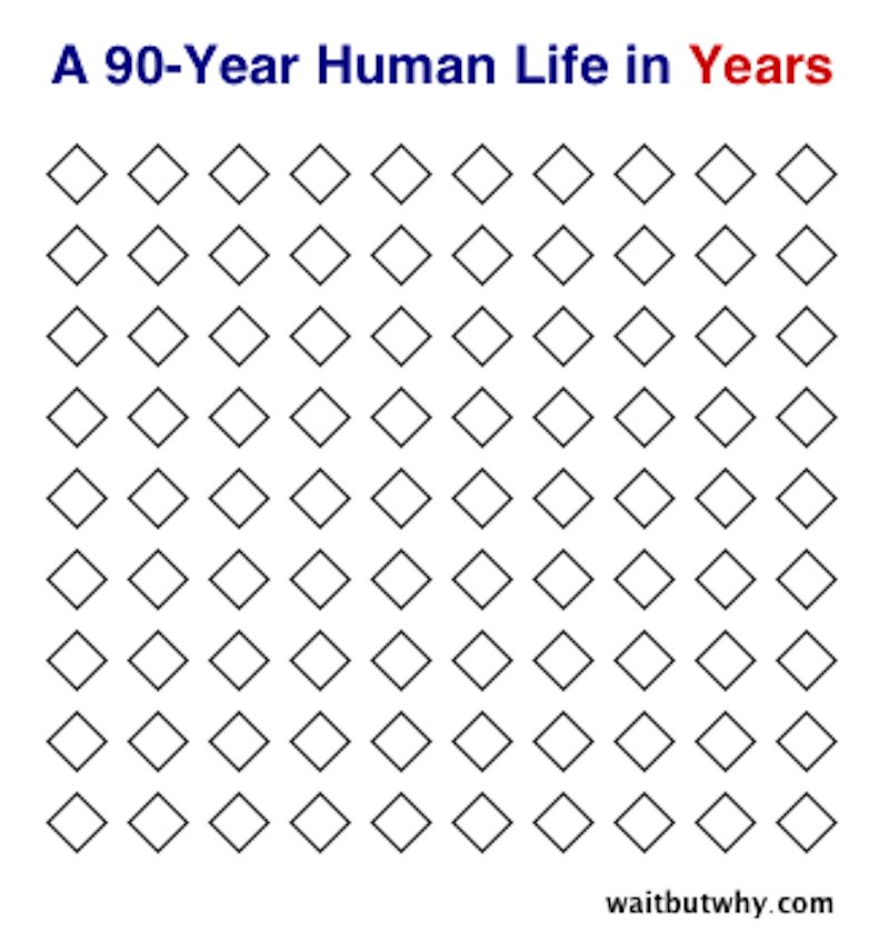 Gráficos sobre la vida12