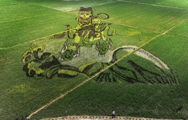 Arte del arroz china Liaoning12