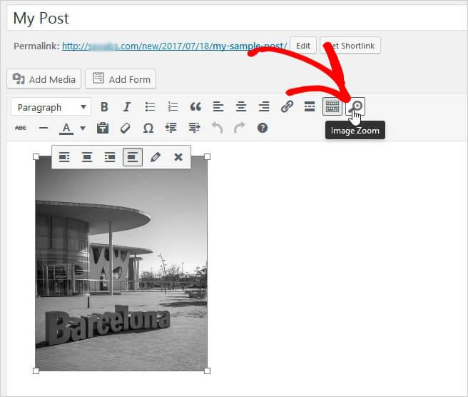 Agregar zoom a las imágenes de publicaciones / páginas