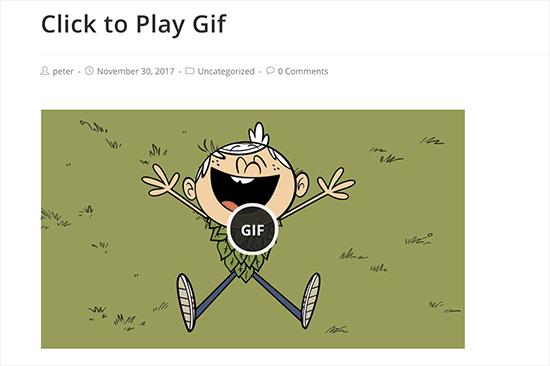 Haga clic para reproducir GIF animado