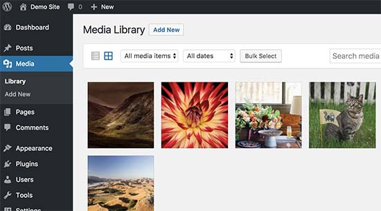 Archivos multimedia cargados a través de FTP a WordPress