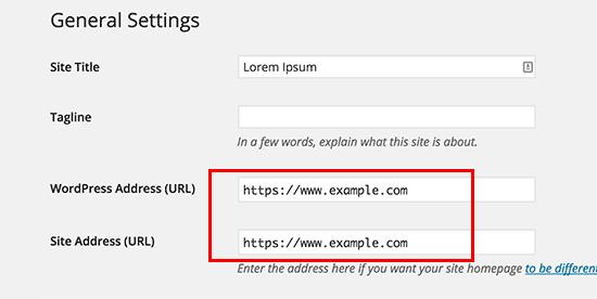 Cập nhật URL WordPress