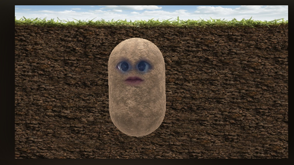How to Turn Yourself into a Potato on Microsoft Teams, Zoom and Skype?