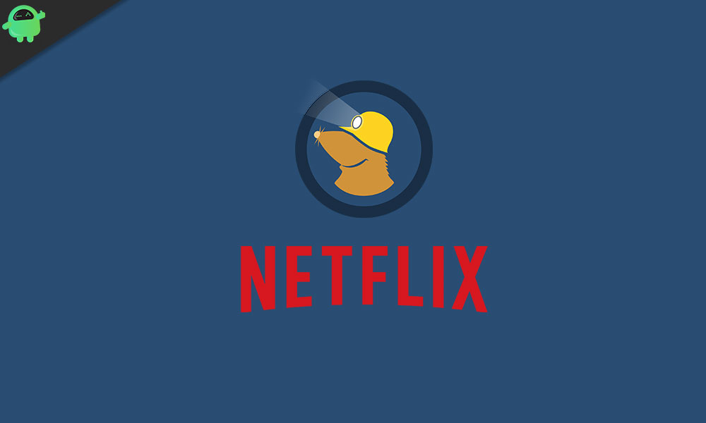 Does Netflix Work With Mullvad VPN