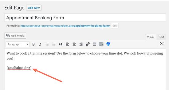 Texto adicional para alrededor del ejemplo de shortcode