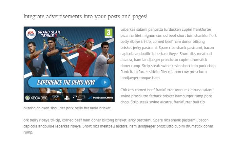 Recenzia reklamy WP Pro: tvorba, predaj a integrácia reklamy 4