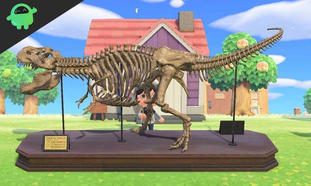Cómo verificar todos los fósiles recolectados en Animal Crossing New Horizons