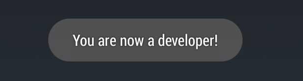 opción de desarrollador