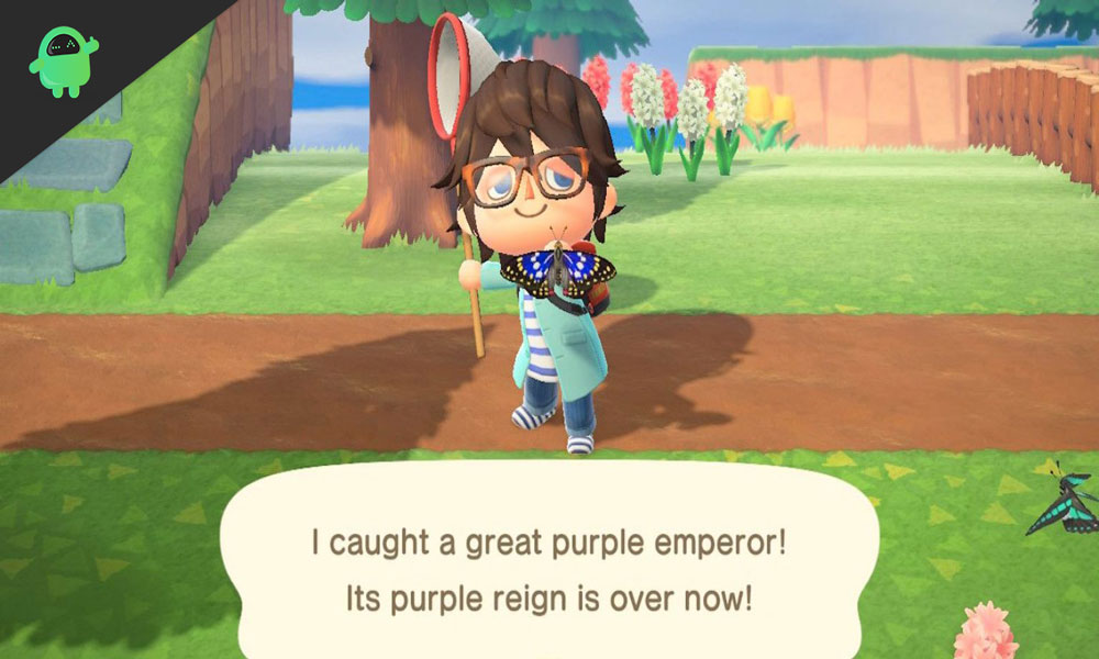 Animal Crossing: New Horizons – A guide to Capture the Great Purple Emperor Butterfly