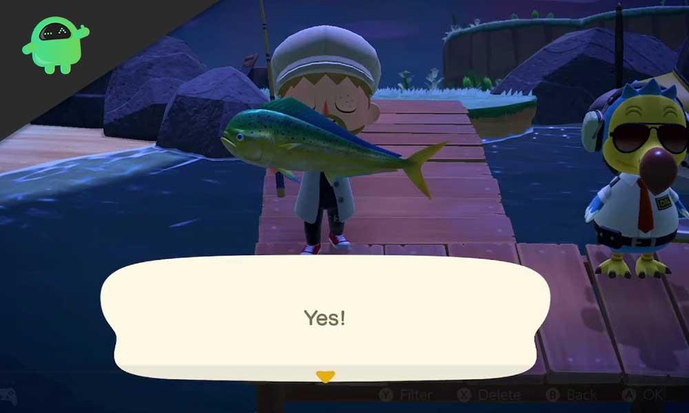 How to Catch Mahi-mahi in Animal Crossing New Horizons