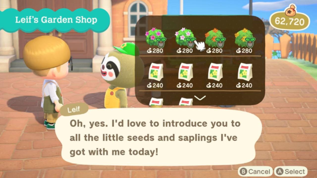 Cómo obtener Leif en Animal Crossing New Horizons